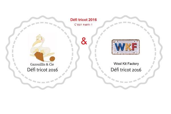defi-tricot-2016-gazouillis-et-cie-cest-parti